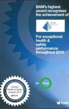 BAM H&S Award 2010